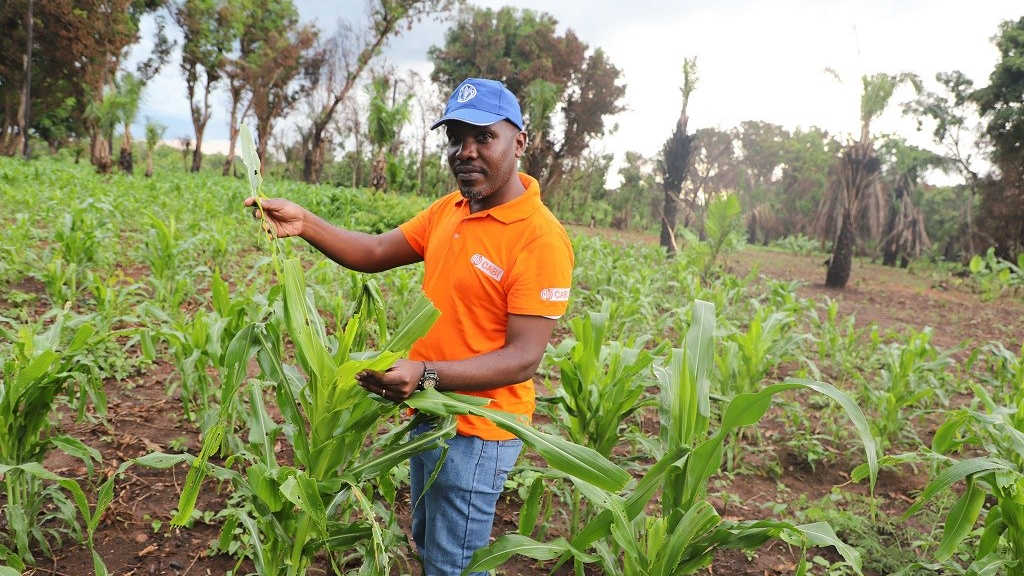 Ivan was in South Sudan to assist farmers to manage FAW