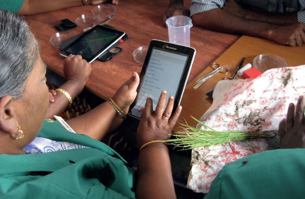 Plant doctor using a tablet at an e-plant clinic in India