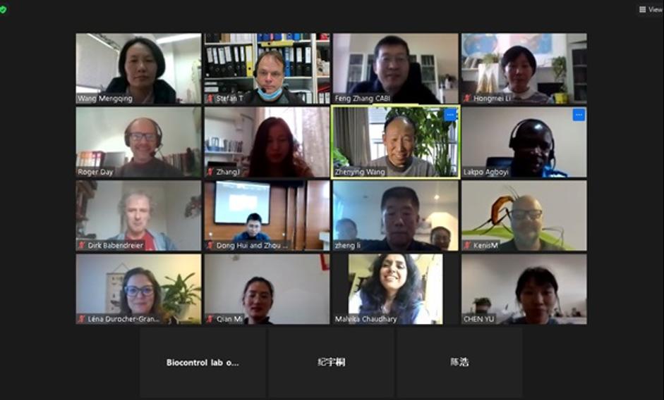 MARA China-CABI Joint Laboratory for Biosafety and MARA China-CABI European Laboratory scientists on Zoom